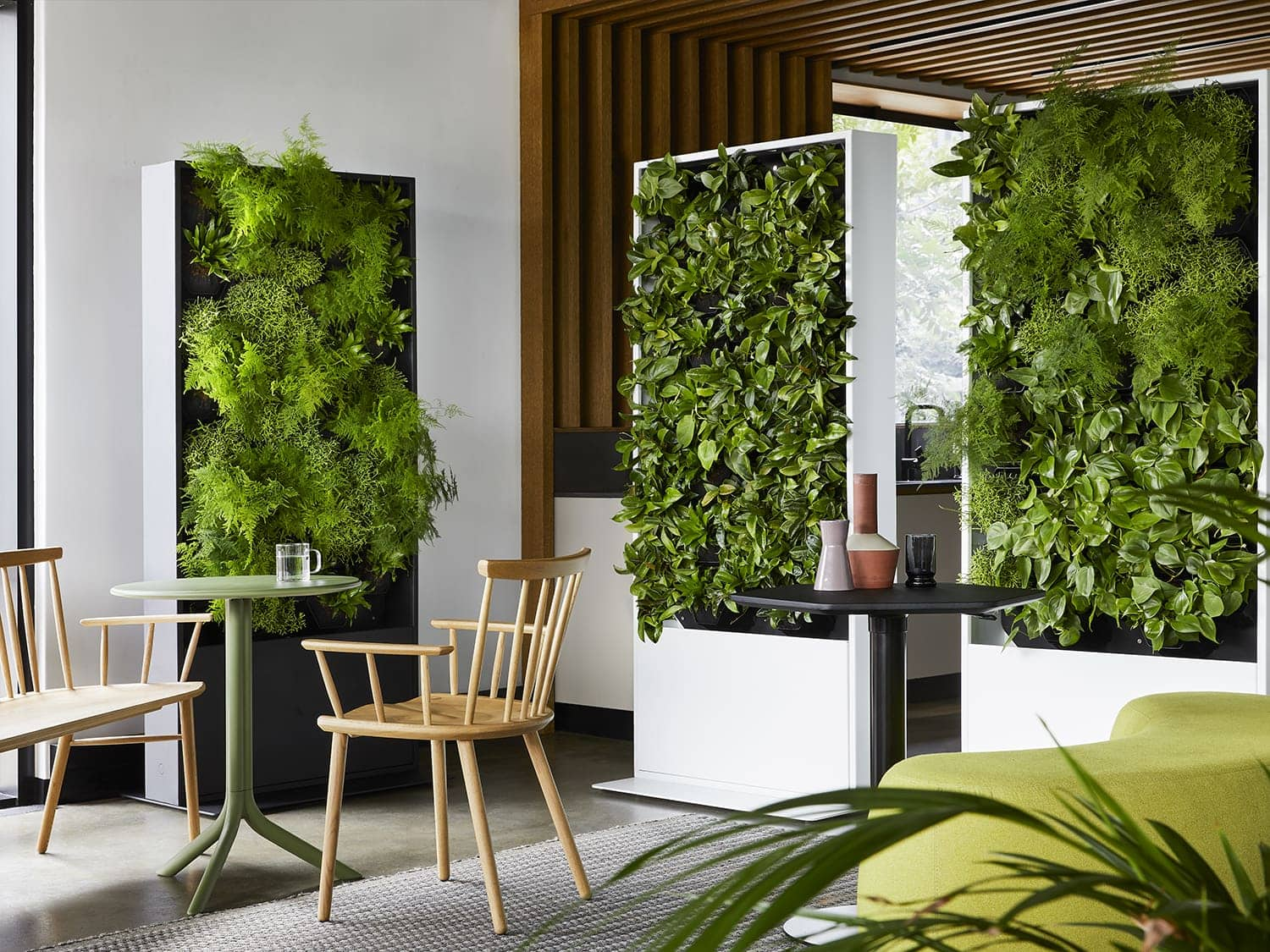 An office canteen featuring vertical planted panels. Photo by Elsa Young.